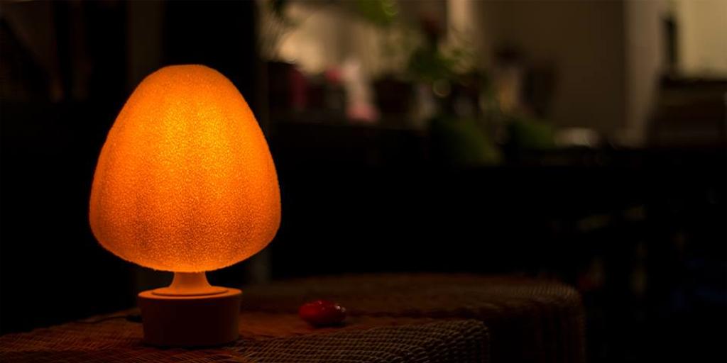 Bonsai-Light for CES2014